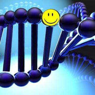 happiness gene found